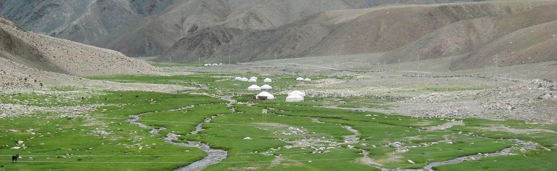 Altai yurt