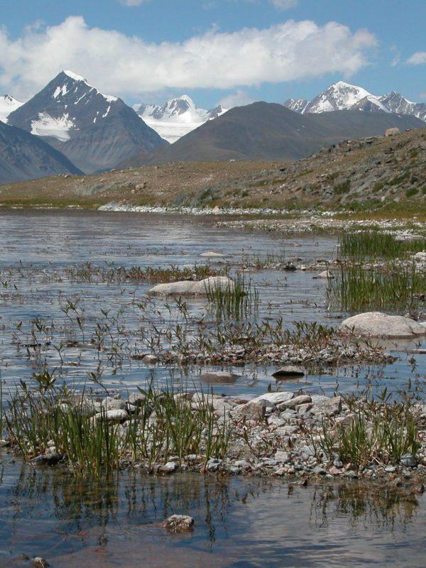 Voyage sur mesure mongolie